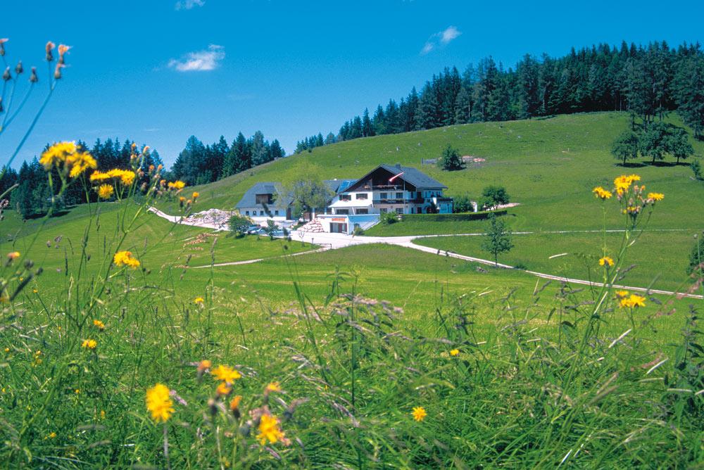 Almgasthof-Windlegern